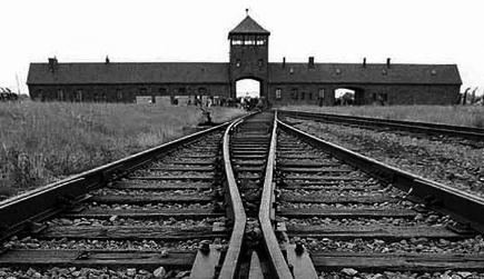 http://www.cibr.fr/sites/default/files/upload/auschwitz_img.jpg